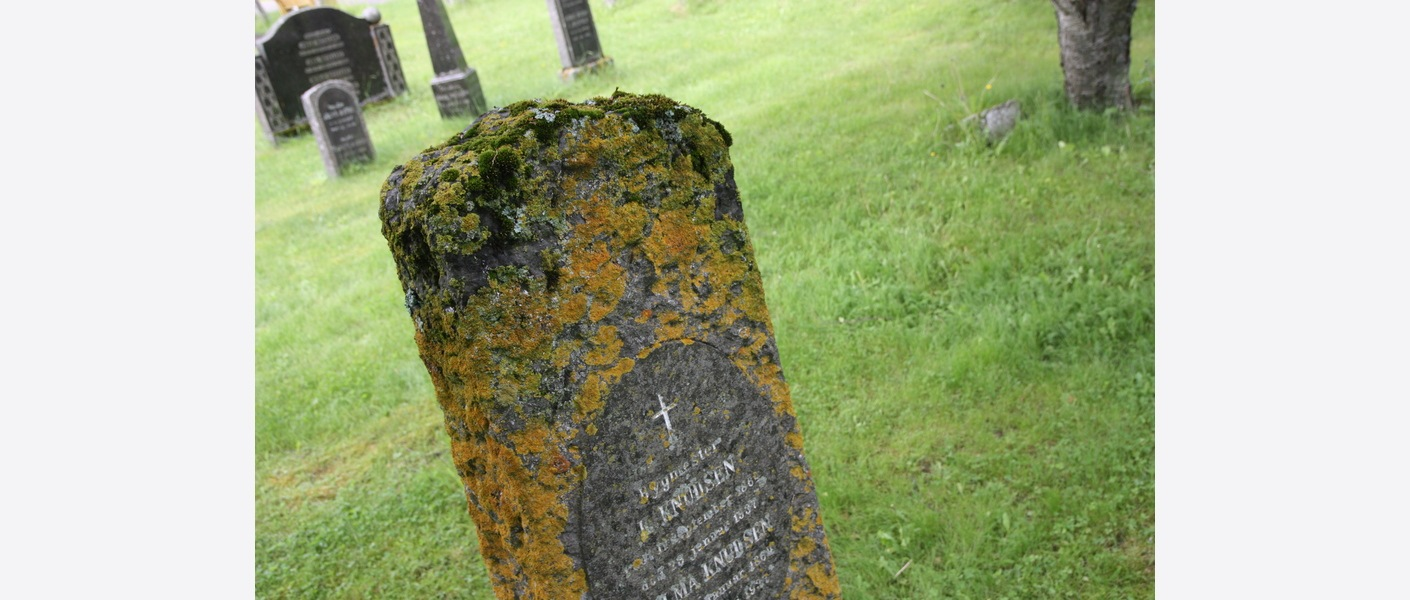 Flere av gravminnene har behov for restaurering. Bodø kirkegård, kvartal 27-52. Foto: Asplan Viak