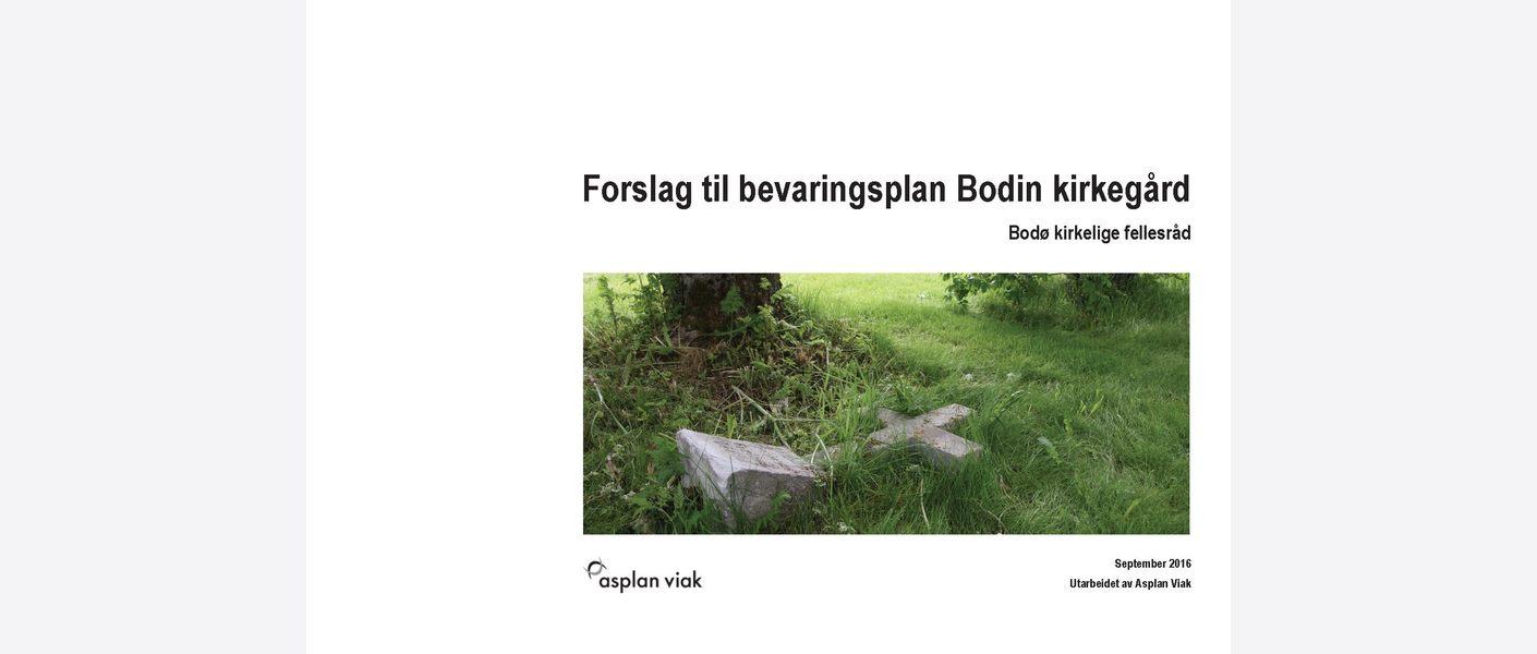 Forside rapport. Foto: Asplan Viak