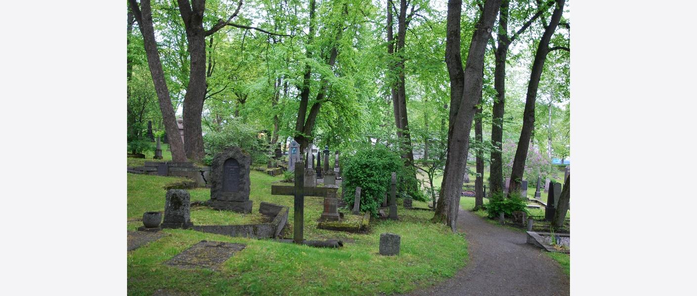Domkirkegården i Trondheim er et automatisk fredet kulturminne. Foto: Asplan Viak