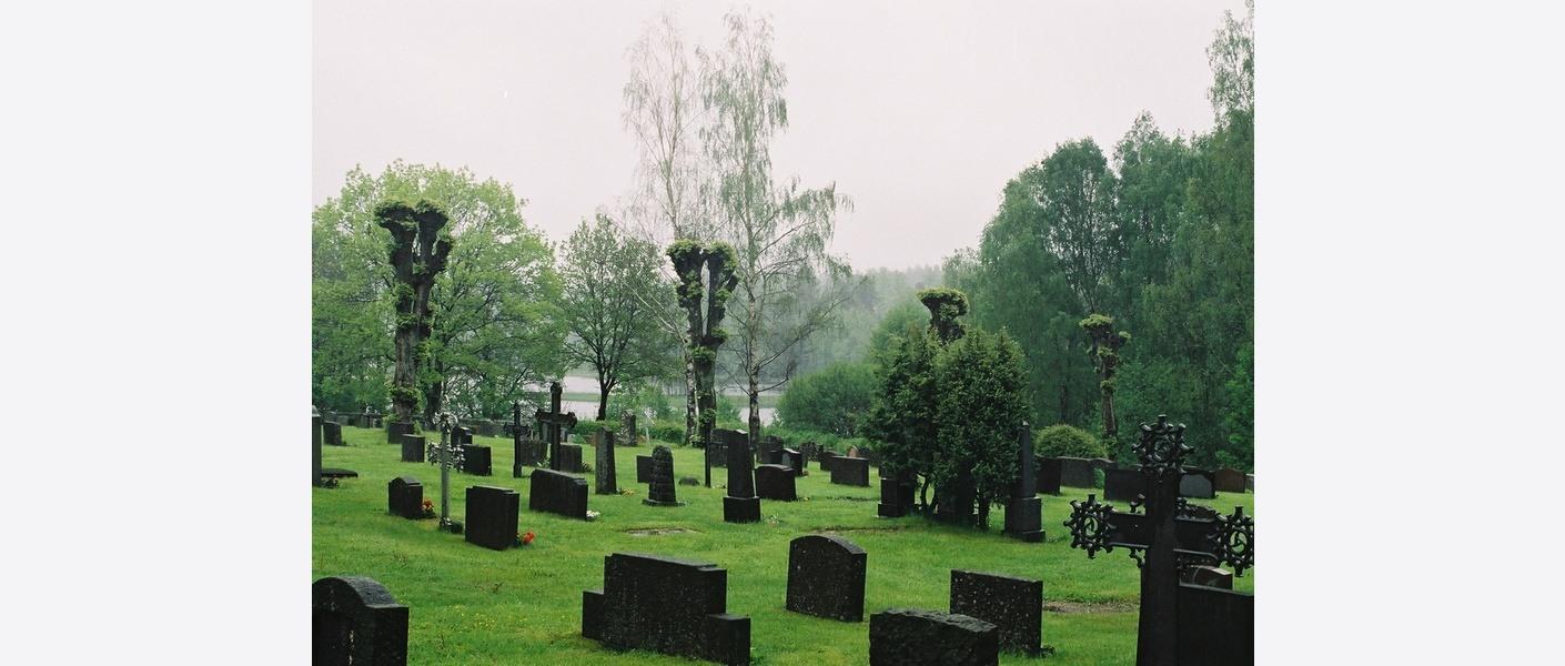 Ledige enkeltgraver på gamle kistegravfelt kan gjenbrukes som urnegraver. Austre Moland kirkegård. Foto: Asplan Viak