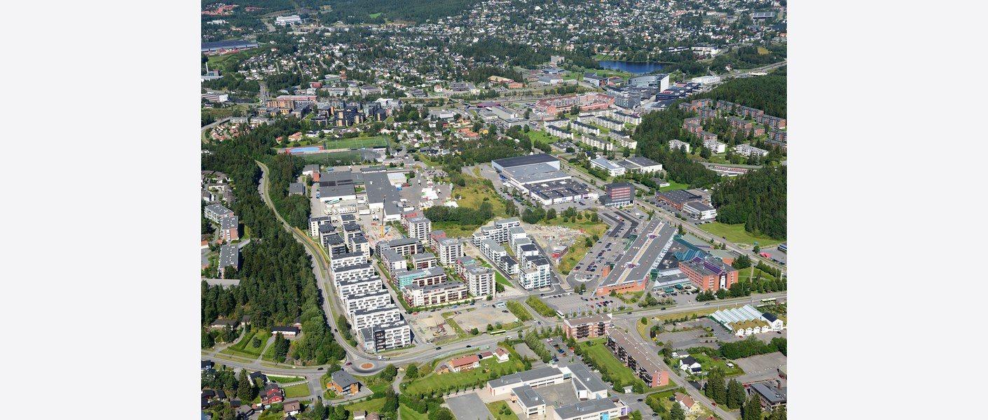 Skårer. Foto: Harald M. Valderhaug