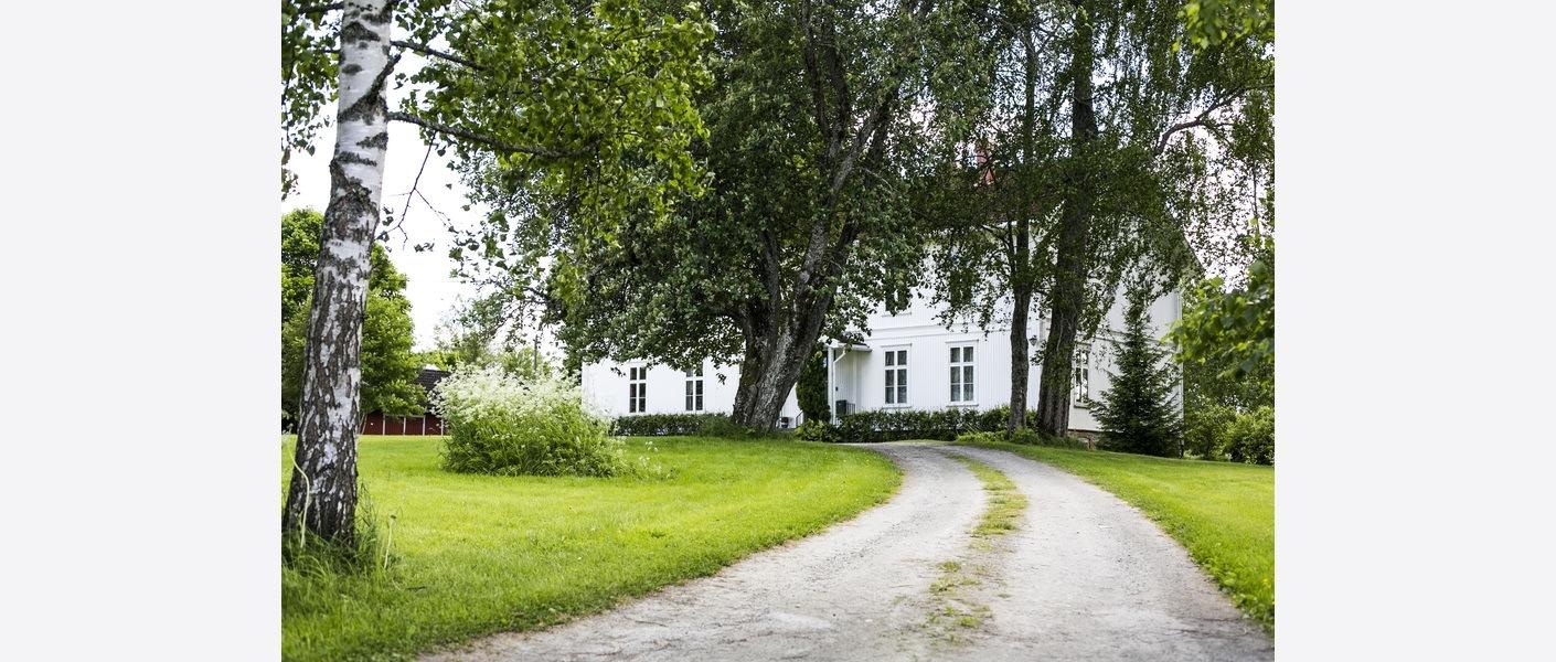 Innkjørselen sommeren 2017. Foto: Åse Holte | Asplan Viak