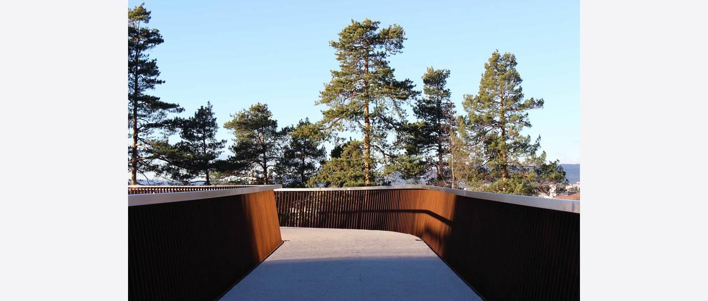 Broa og furukronene inngår som en viktig del av turopplevelsen. Foto: Lars Danielsson