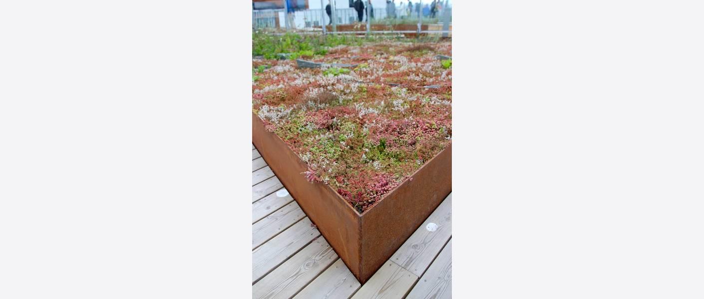 Tårnhage i 16. etasje. På takhagene er det brukt stedegen vegetasjon fra øyene i indre oslofjord for å skape beskyttende biotoper som