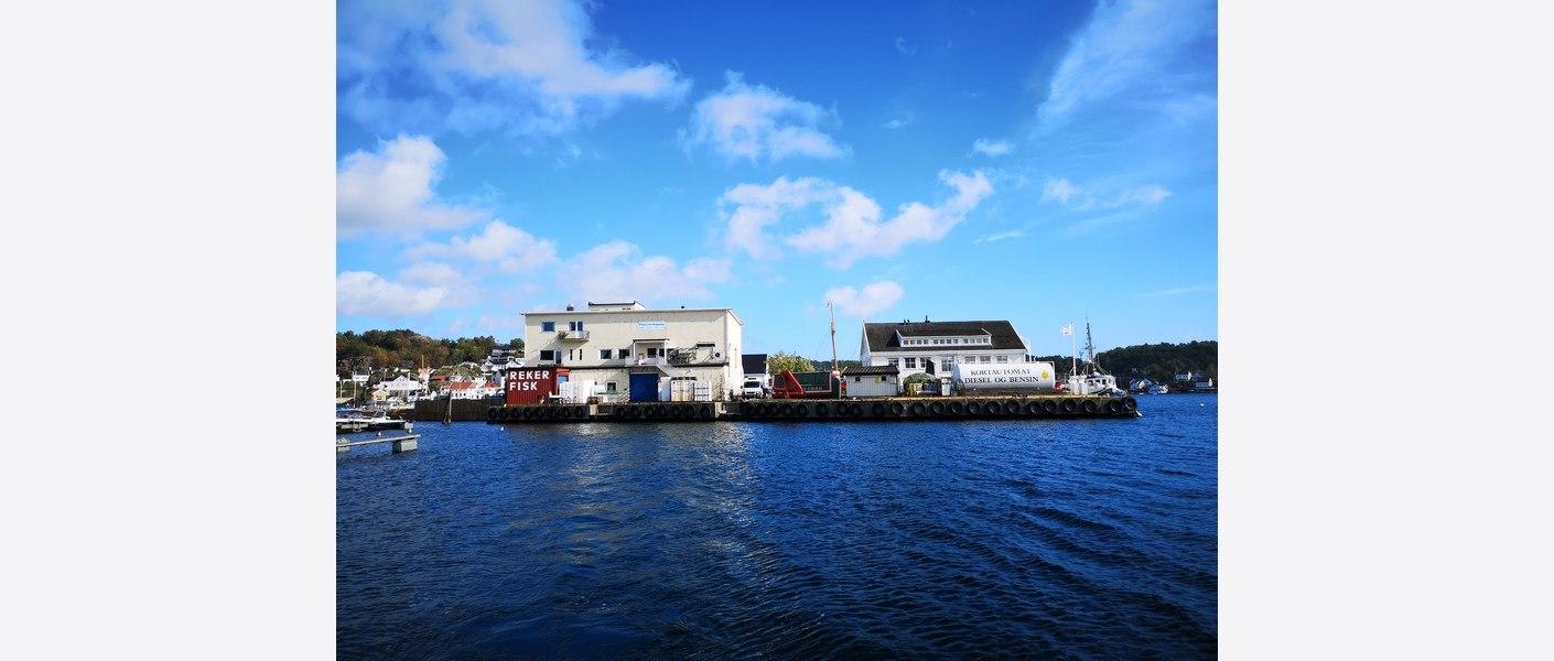Dagens fiskemottak. Foto: Asplan Viak