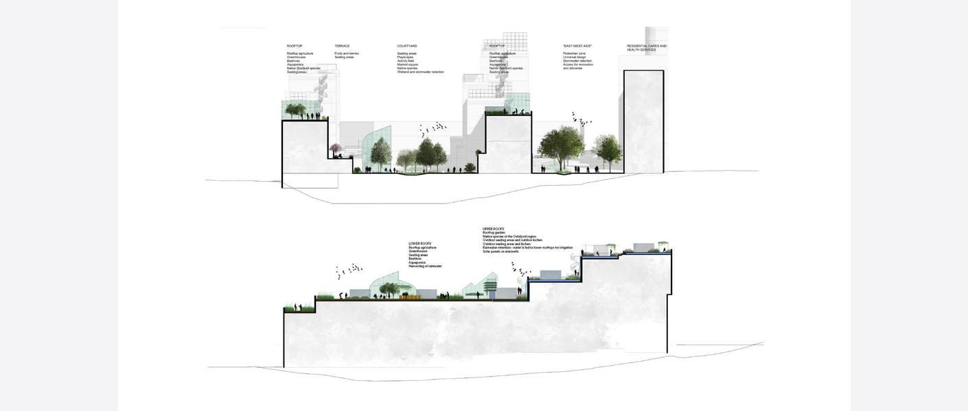 Snitt. Illustrasjon: MAD arkitekter, Asplan Viak og Landskap +.