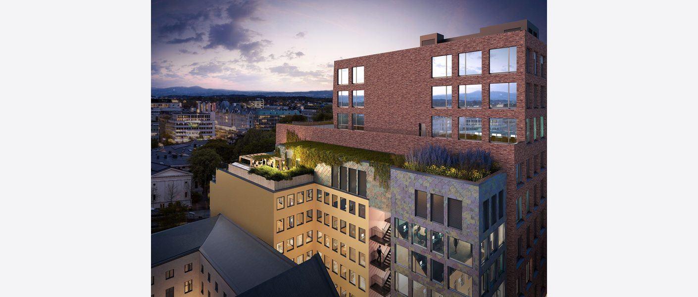 Frodig og grønn takterrasse. Illustrasjon: MAD arkitekter