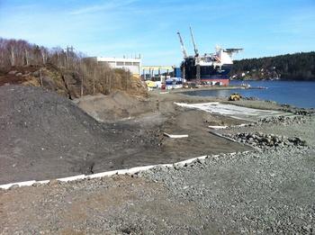 Miljøopprydding i Eydehavn