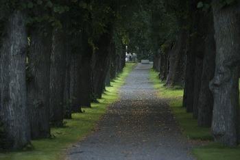 Tønsberg gamle kirkegård