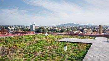 Asplan Viak blir partner i Grønn by