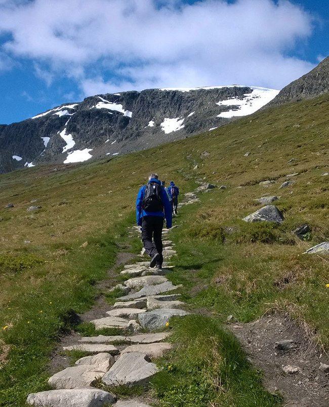 Frå den steinlagte stigen opp på Hallingskarvet frå Prestholt. Foto: Asplan Viak.