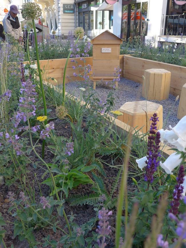 Pop up parken til Asplan Viaks landskapsarkitekt, Gry Ellen Ringstad, er en summende møteplass for mennesker og bier. Foto: Asplan Viak