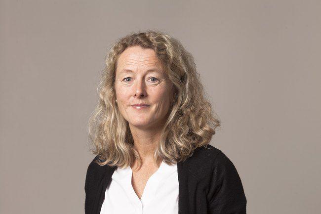 Divisjonsdirektør for Plan og Arkitektur, Lise Haaland Eriksen.