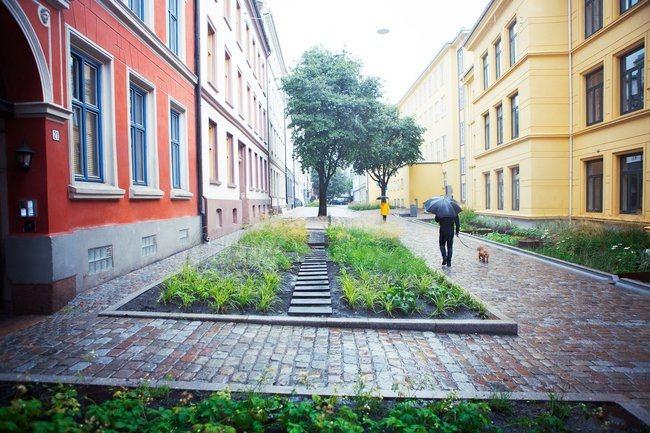 Pilotprosjekt for klimatilpasset overvannshåndtering i Deichmans gate og Wilses gate i Oslo. Foto: Åse Holte