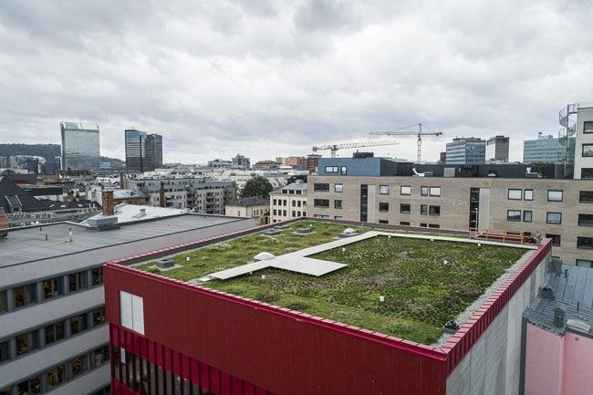Vega Scene. Vinner av Oslo bys arkitekturpris 2019. Dronefoto: Asplan Viak