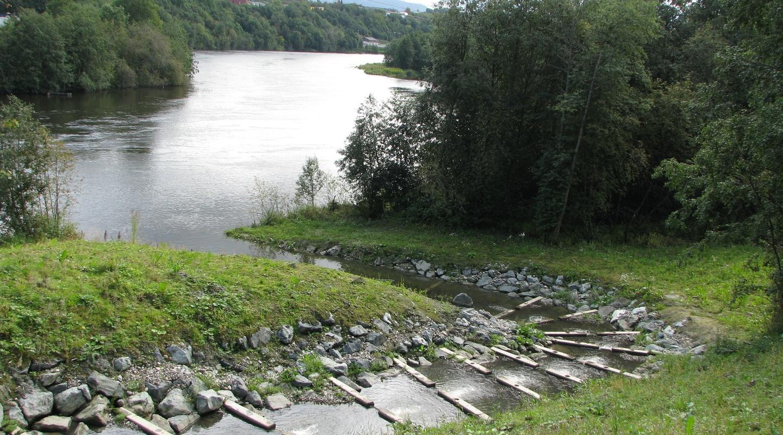 Gjenåpning av Sverredalsbekken