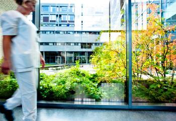 Nytt sykehusoppdrag for landskapsarkitekter og trafikkplanleggere i Asplan Viak  / Foto: Stein Risstad Larssen