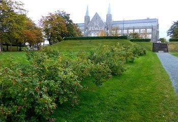 NTNU campusutvikling – Asplan Viak er lommekjent på Gløshaugen /