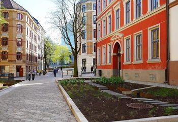 Deichmans gate åpnet i ny prakt / Regnbed i Deichmans gate. Foto: Tone Spieler, kommunikasjonsrådgiver for vann og avløpsetaten i Oslo kommune.