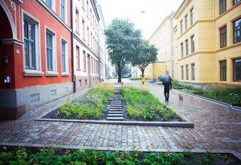 Open House Oslo: Besøk to flotte Asplan Viak-prosjekter denne helgen / Et pilotprosjekt for klimatilpasset overvannshåndtering hvor grå- og blågrønn infrastruktur bidrar til å skape en attraktiv oase for bybarna og øvrige beboerne sentralt i Oslo sentrum. Foto: Åse Holte