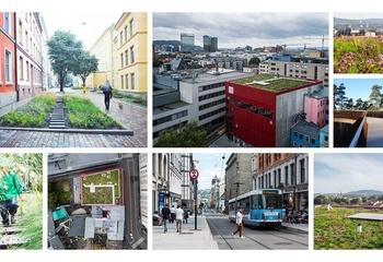 Asplan Viak samler landskapsarkitektene sine på IFLA-kongressen / Asplan Viaks landskapsarkitekter til verdenskongressen for landskapsarkitektur. Foto: Asplan Viak