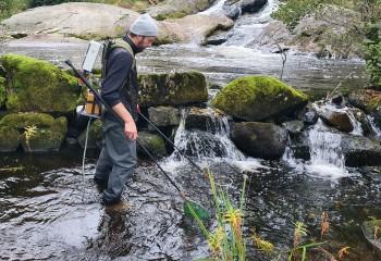 Asplan Viak styrker miljø- og naturkompetansen / Som naturforvalter i Asplan Viak vil oppgavene variere i alt fra overordnet planlegging, kartlegging til oppfølging i gjennomførings- og driftsfasen. Noe for deg? Foto: Asplan Viak